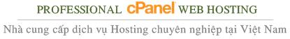 nhà cung cấp dịch vụ hosting chuyên nghiệp